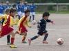 Finalrunde G-Jugend: Wambeler SV - Mengede 08/20 (08.06.2013)