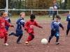 Findungsrunde G-Jugend: Wambeler SV - SV Brackel 06 II (10.11.2012)