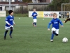 Freundschaftsspiel F-Jugend: SV Langschede II - Wambeler SV II (24.11.2012)