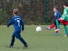 Freundschaftsspiel G-Jugend: SG Phönix Eving - Wambeler SV (24.11.2012)