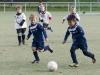 Fußball G-Jugend: Herbstturnier beim BV Herne-Süd (06.10.2012)