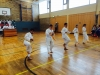 Karate: Erfolgreiche Kyu-Grad-Prüfungen Frühjahr 2014