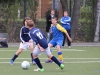 Meisterschaftsspiel D-Jugend: Alemannia Scharnhorst – Wambeler SV (29.09.2012)