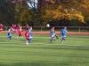 Testspiel F-Jugend: SV Brackel 06 II - Wambeler SV II (17.11.2012)