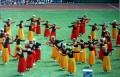 Teilnahme an den Deutschen Turnfesten