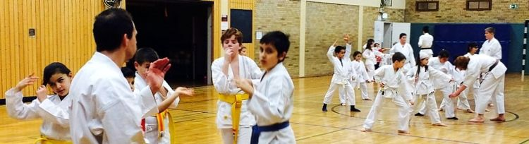Karate - Info