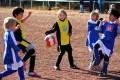 Findungsrunde F-Jugend: Wambeler SV II - SG Phönix Eving