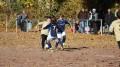 Fußball D-Jugend: Wambeler SV - FC Merkur 07