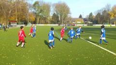 Testspiel F-Jugend: SV Brackel 06 II - Wambeler SV II